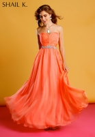 3856 CORAL